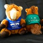 Stuffed Animal Toy Mr. Lucky Horse